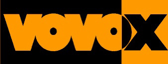 vovox,ジャズギター,ギター,ケーブル,修理